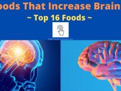 Best Foods That Increase Brain Power