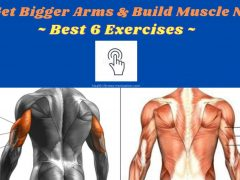 How to Get Bigger Arms & Build Muscle Naturally