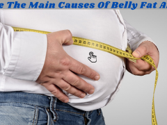 What Are The Main Causes Of Belly Fat And Cures
