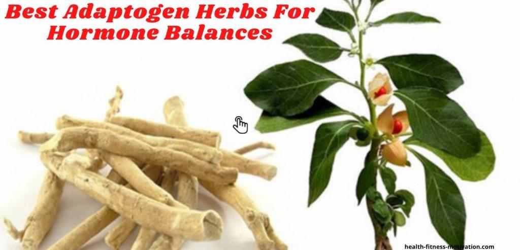 Best Adaptogen Herbs For Hormone Balances